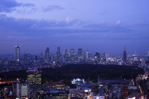 Cerulean Tower Tokyu Hotel photo 90