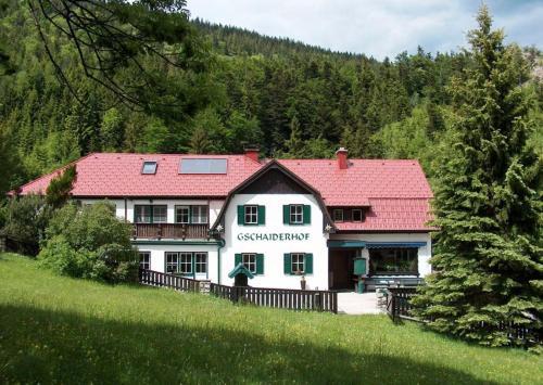 Landhaus Gschaiderhof - Apartment - Puchberg am Schneeberg