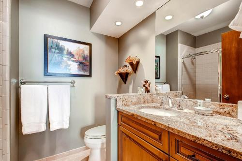 Unit 18 - Beaver Creek, CO 81620