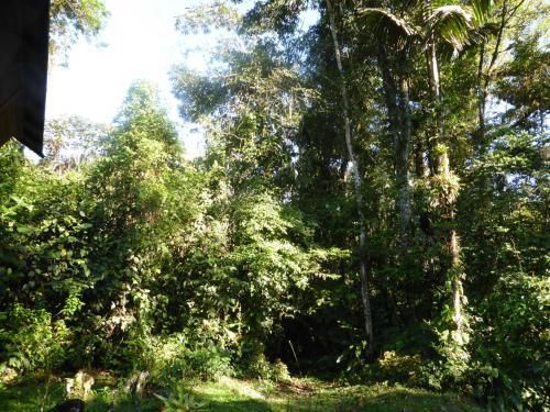 Amazanga Ecolodge, Tena