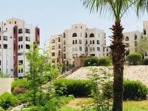 Al Norus Resort Ismailia 部屋の写真