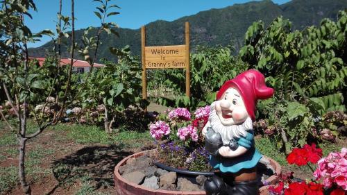 Granny's farm São Vicente