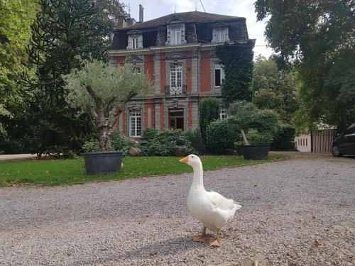 Hotel-overnachting met je hond in Château Lambert Near Airport - Charleroi