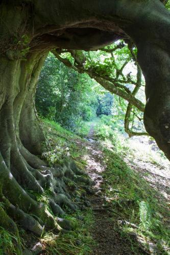 Crickhowell, Abergavenny, Crickhowell, NP8 1RH, Wales.