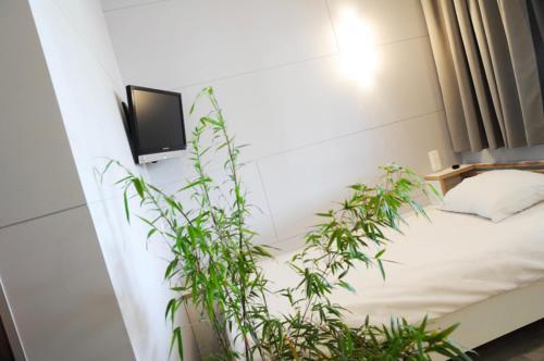 Hotel-overnachting met je hond in EXIT 29 - Habay-la-Neuve