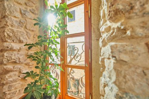 Double Room with Terrace - Annex - single occupancy Cas Comte Suites & Spa - Adults Only 67