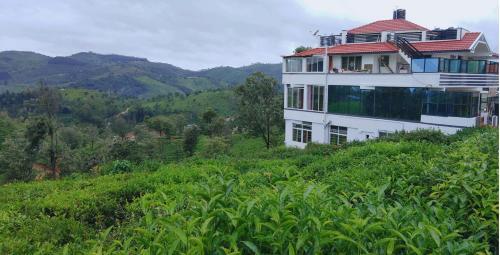 . Great Windows Resorts