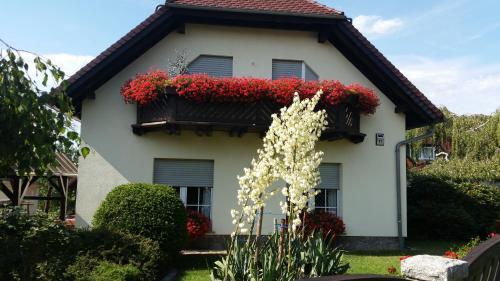 Studio Orchidee - Apartment - Weißig