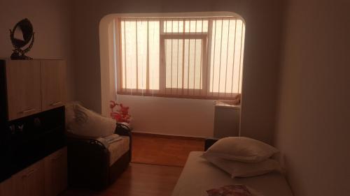 . Apartament Mircea