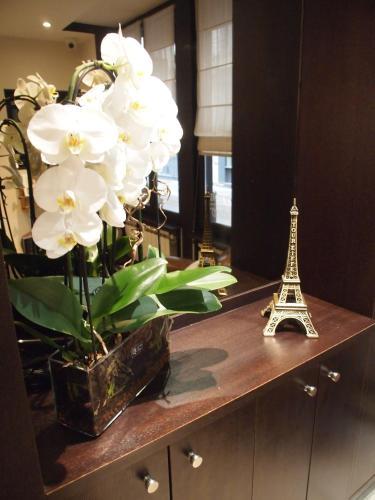 Hotel de la Paix Tour Eiffel photo 57