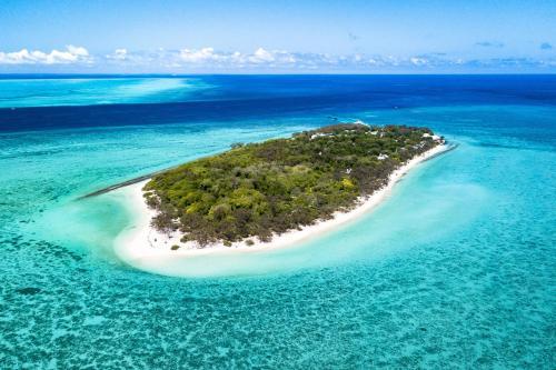 Great Barrier Reef, 4680 Heron Island, Australia.