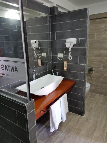 Фото отеля Hotel ANTAG