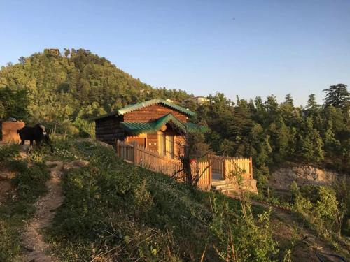 Seegreen Lodges