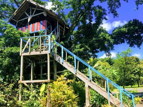 Tanna volcano view treehouse (B&B)