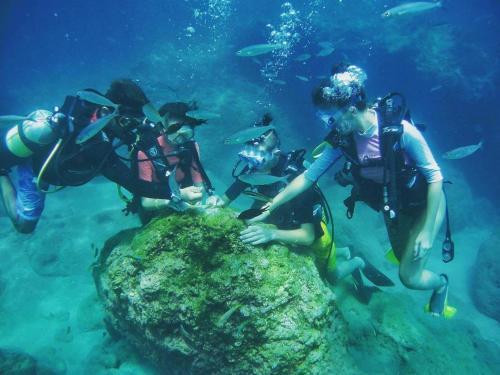 Fethiye Divers Delight Fethiye yol tarifi