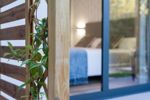 Habitación Doble - 1 o 2 camas Hotel A Curuxa Wellness 4