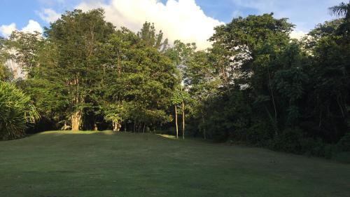 El Suzanne Rainforest Lodge стая снимки
