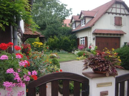 Gitehaushaltermerkwiller - Apartment - Merkwiller-Pechelbronn