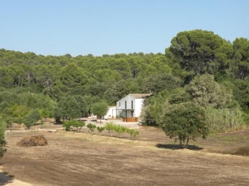 Relajante Casa De Campo En Mallorca