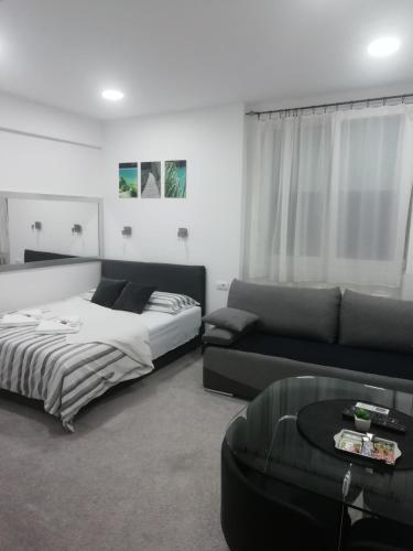 . Apartment Centar