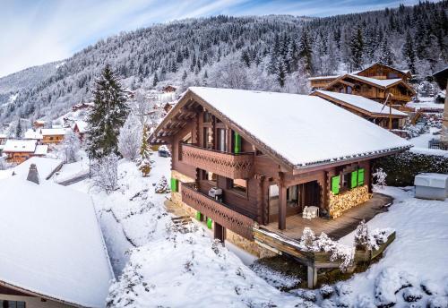 Le Hibou Blanc - Chalet - Montriond
