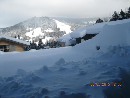 Route de la Cierne 91 Chalet Perce-neige - Hotel - Les Paccots