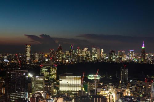 Cerulean Tower Tokyu Hotel photo 175