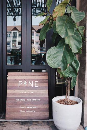 PINE cafe'&bed photo 24