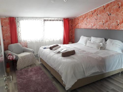Istanbul Arslan rooms