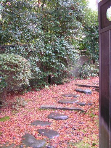 59-1 Yoshida Shimo-oji-cho, Sakyo-ku, Kyoto 606-8314, Japan.