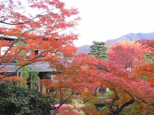 Ryokan Inn Yoshida-sanso image