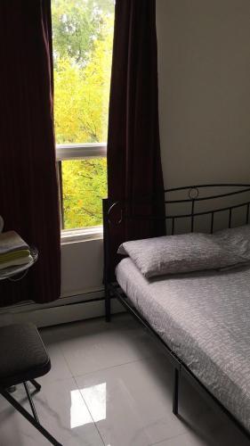 University Apartment Kuva 18