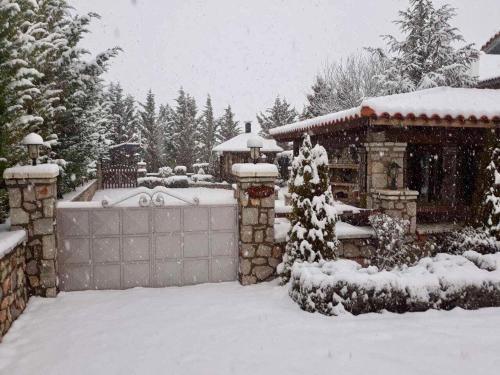 villa in Parnassos - Chalet - Arachova