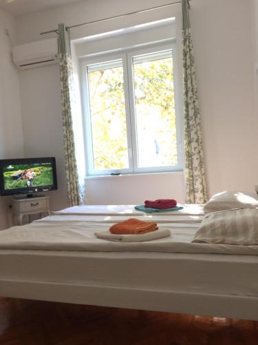 Cricket Park Hostel