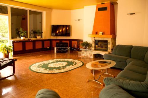Ski&Adventure Vila - Accommodation - Azuga