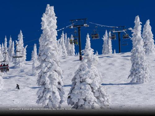 Ski Trail Condominiums - SK201 - Steamboat Springs, CO 80487