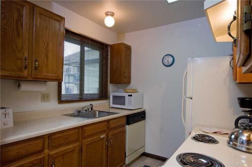 Shadow Run Condominiums - SHB21 - Steamboat Springs, CO 80487