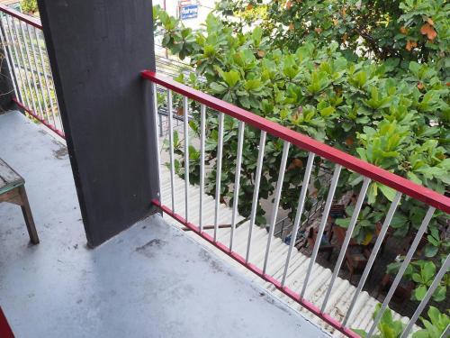 il Treno Hostel photo 48
