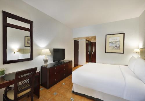 Hilton Cairo Heliopolis Hotel - image 10