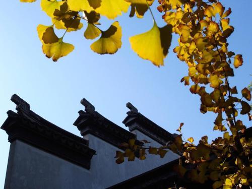 Tongli Lake View Hotel photo 61