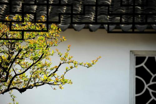 Tongli Lake View Hotel photo 74