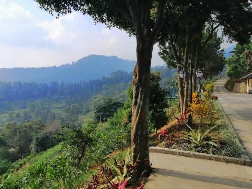 Salak View Resort, Bogor