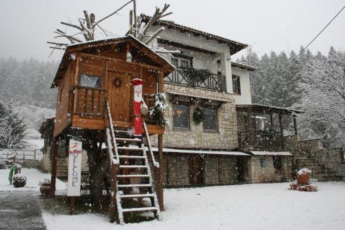 Villa Filokosta - Apartment - Pertouli
