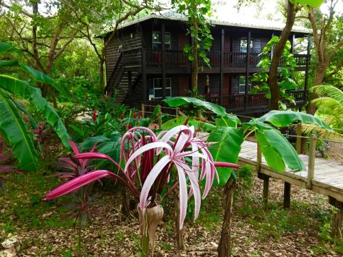 Upachaya Eco-Lodge & Wellness Resort