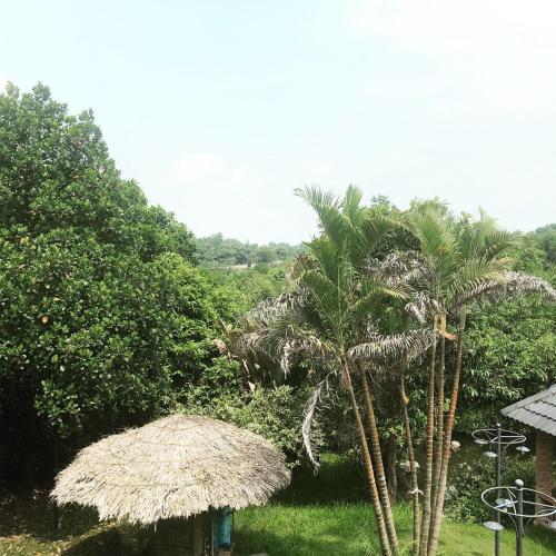 Hoa Binh Garden Resort, Lương Sơn