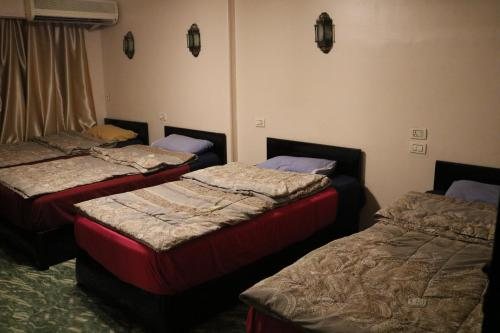 Single Bed in Mixed Dormitory Room (Non Egyptian & Arab Nationals)