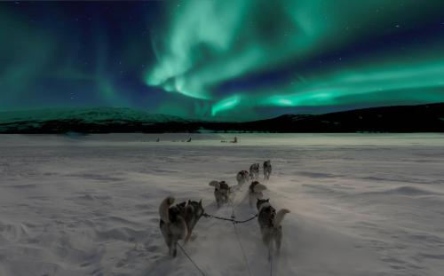 Arctic Light Holiday House - Accommodation - Jukkasjärvi