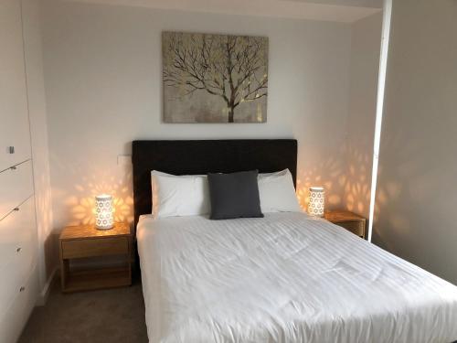 Wyndel Apartments Chatswood - Albert - image 8