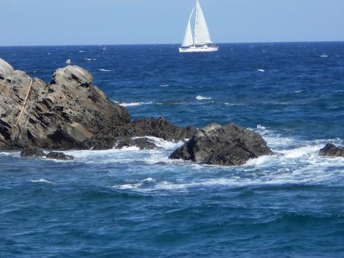 . Le Case Punta Negra