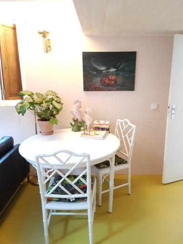Stylish & Chic Tiny House, Middelburg